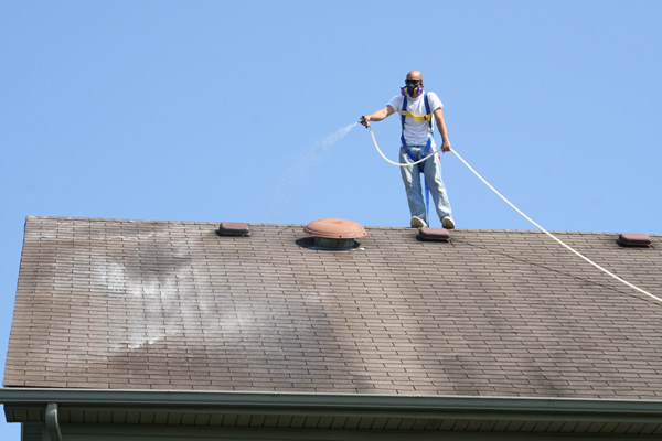 Safe Roof Cleaning & Lexington KY Pressure Washing and Roof Cleaning Company Service ... memphite.com