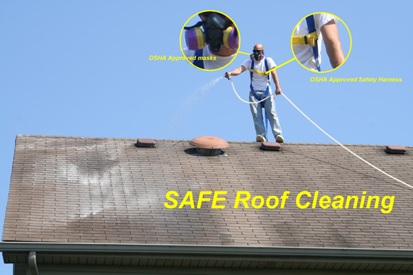 Lexington Ky Pressure Washing And Roof Cleaning Company