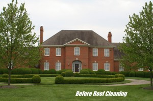 Lexington KY Roof Cleaning