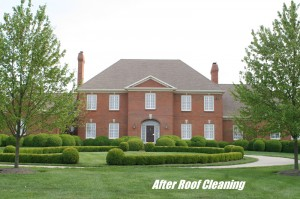 Brookmonte Lexington KY Roof Cleaning